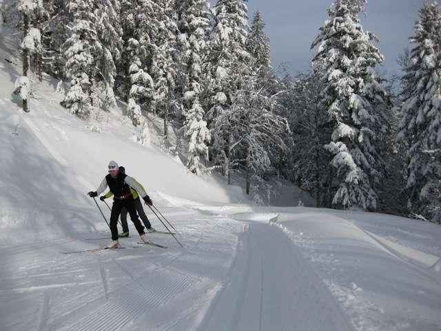800x600_domaine-nordique-ski-de-fond-la-bresse-802