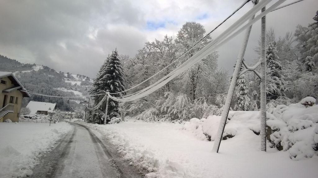 Des-lignes-alourdies-par-le-poids-de-la-neige