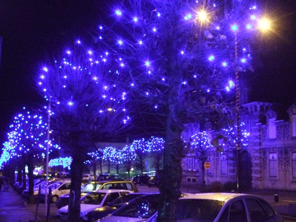 L'avenue Julien Méline toute en bleu