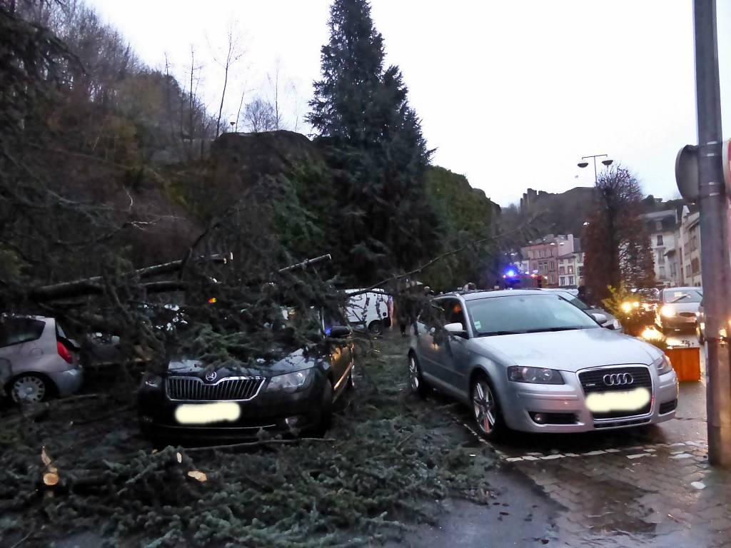 Un arbre a écrasé des voitures sur un parking ce lundi soir à Epinal.