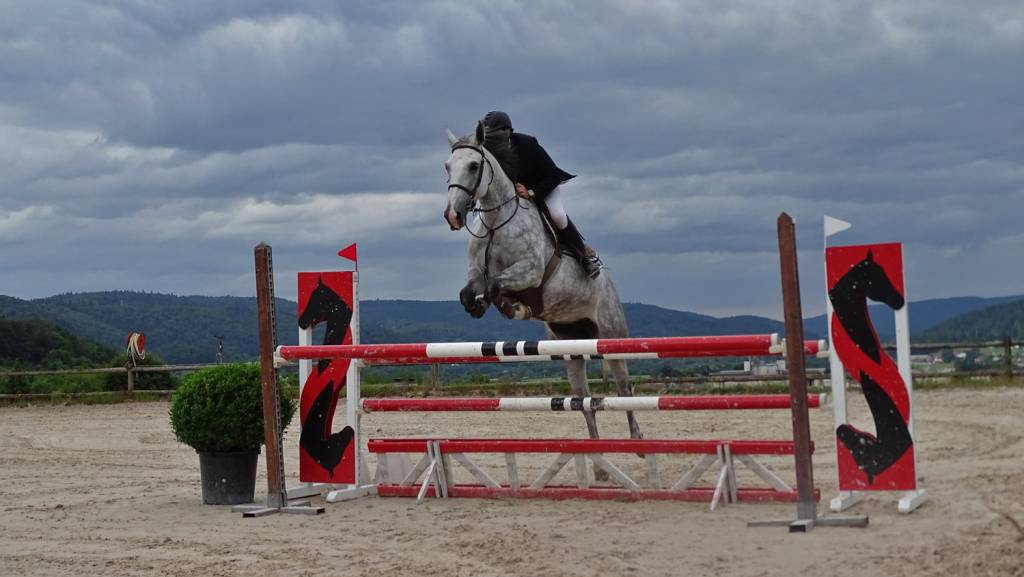 centre equestre xertigny