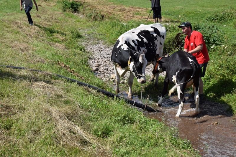 Une pomped'arrosage c'est tout de même plus efficace ! L'abreuvement du bétail a été ponctuellement rétabli.