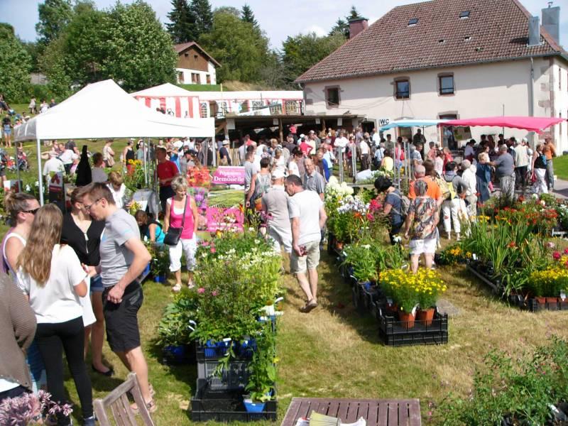 Le Haut-du-Tôt – La 29e Fête des Plantes dimanche 14 août 2016.