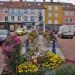 05 Fleurissement Automnal