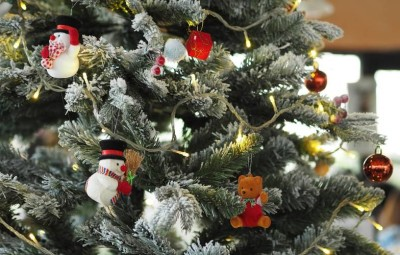 the-christmas-tree-1081317_960_720