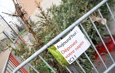 Sapin_depot_Oullins_21530-1