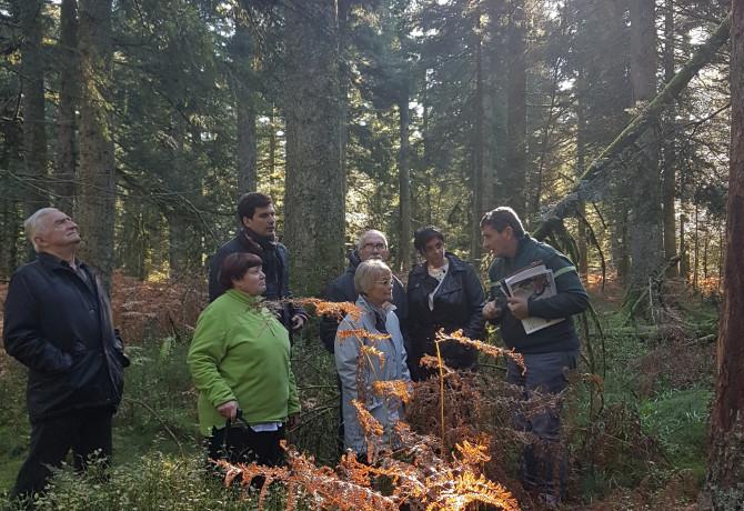 Visite de la forêt communale