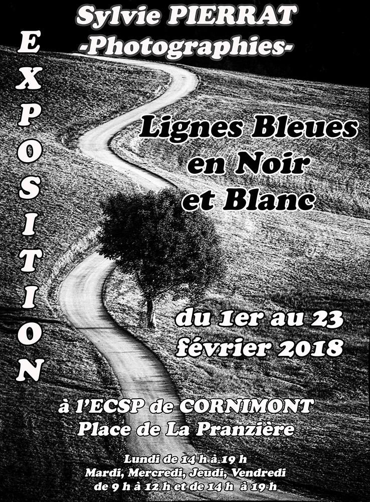 Affiche Expo Sylvie PIERRAT
