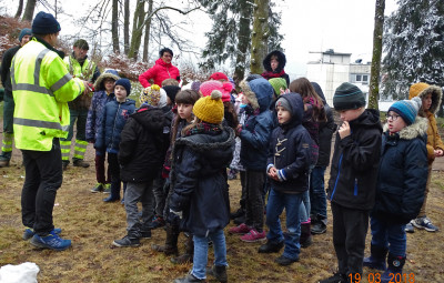 Les classes CE1-CE2 et Ulis de Révillon s'impiquent dans le programme la forêt s'invite à l'école