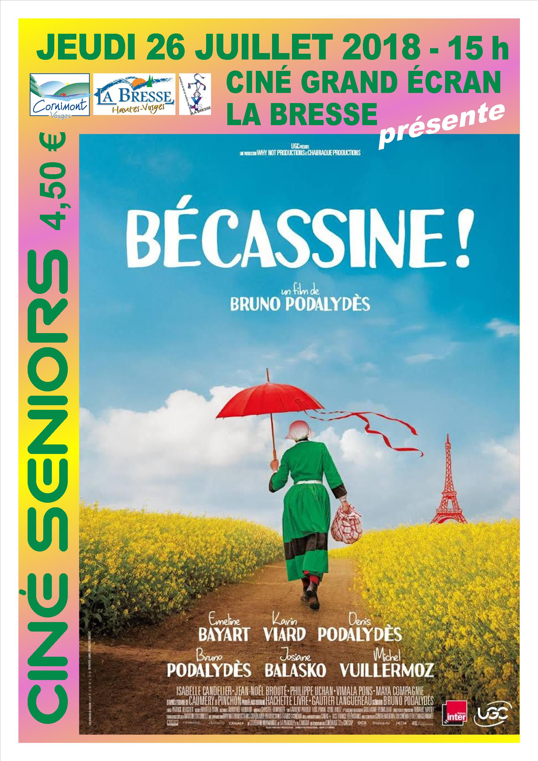 2017-07-26 Bécassine