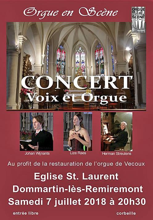 Affiche Concert Dommartin