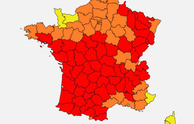 Pollens_Graminés_Alerte_Rouge