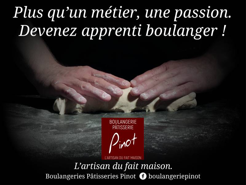 apprenti Pinot