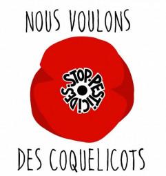 coquelicots-241x255