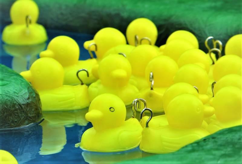 hook-a-duck-660524_1280