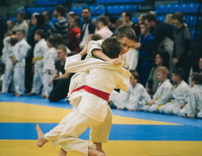 judo-4454836_1280