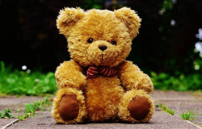 teddy-1444642_960_720